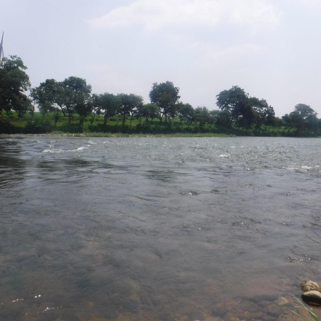 水位 矢作 川